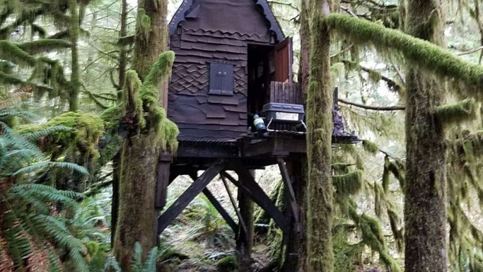Authorities found a stash of child pornography in a remote cabin in a national forest.