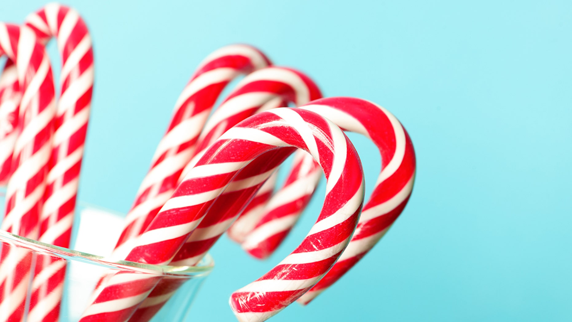 A Texas woman claims her dog died after eating sugar-free candy canes.