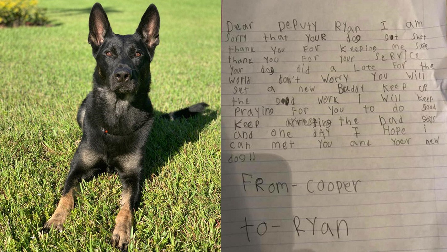 Palm Beach Sheriff's Office K-9 Officer Cigo sacrificed his life to save his fellow officers during a Christmas Eve shooting on Monday. A Florida boy named Ryan penned a letter shared on Thursday to the deputy to whom Cigo belonged.