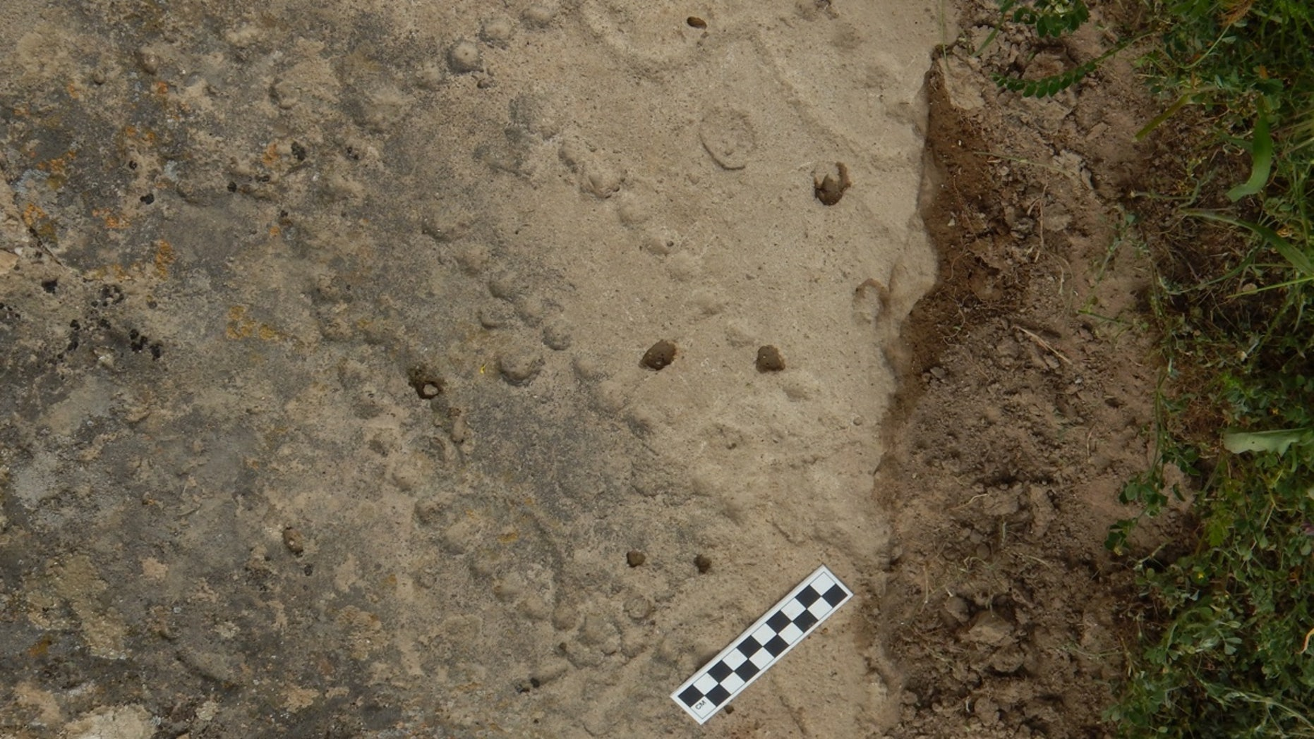 A distinctive pattern of holes scored into the rock of an ancient shelter in Azerbaijan are the remains of a board for one of the world's oldest games.