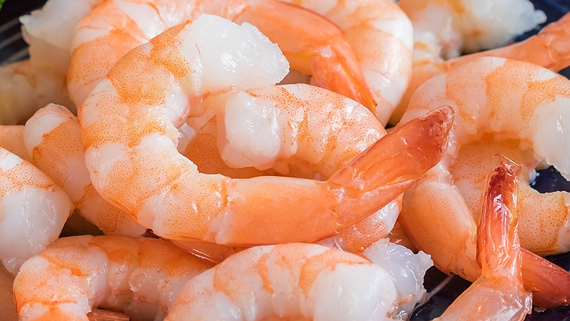 Those who eat raw or under-cooked seafood could develop a foodborne illness.