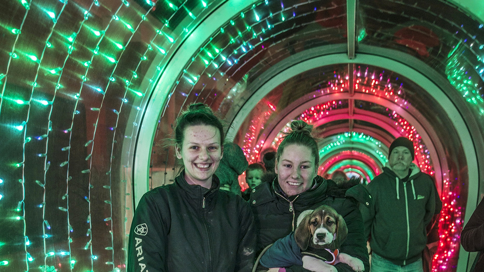 Celina Stone popped the question to her girlfriend, Jade Euden, inside the unlikely tourist attraction.