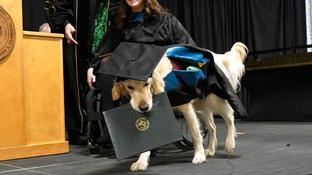 """Clark University's Board of Trustees honored Griffin for what they said was """"extraordinary effort, steadfast commitment and diligent dedication to the well-being and student success"""" of his handler."""