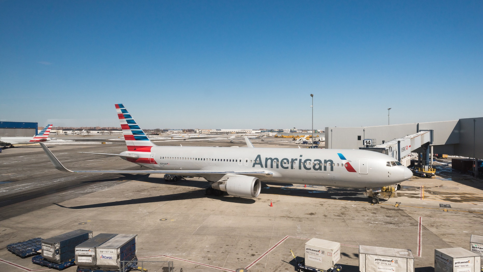 American Airlines removed a family from a plane on Wednesday after passengers and crew members complained one of the family members smelled.
