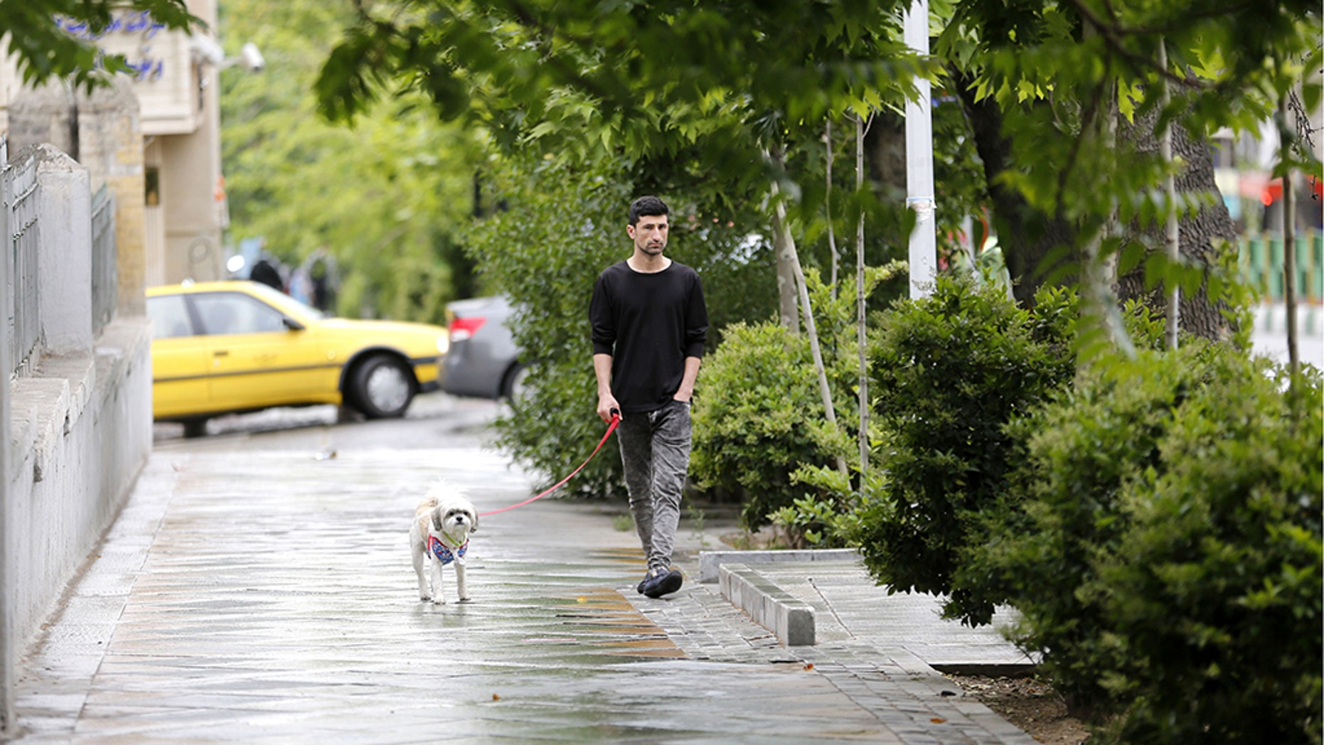 A man walks his dog in Tehran on May 9, 2018.