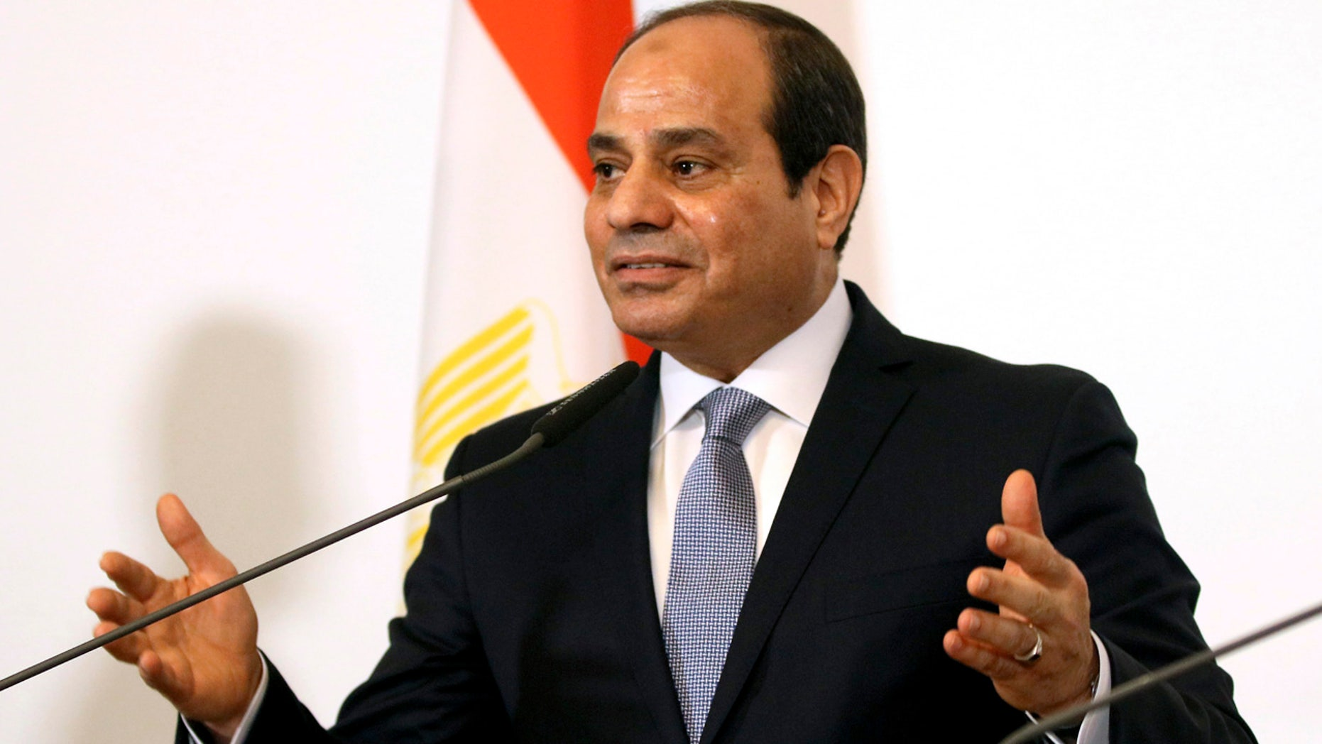 Egyptian President Abdel-Fattah el-Sissi, seen here in December 2018, denied his country held political prisoners. (AP Photo/Ronald Zak, File)