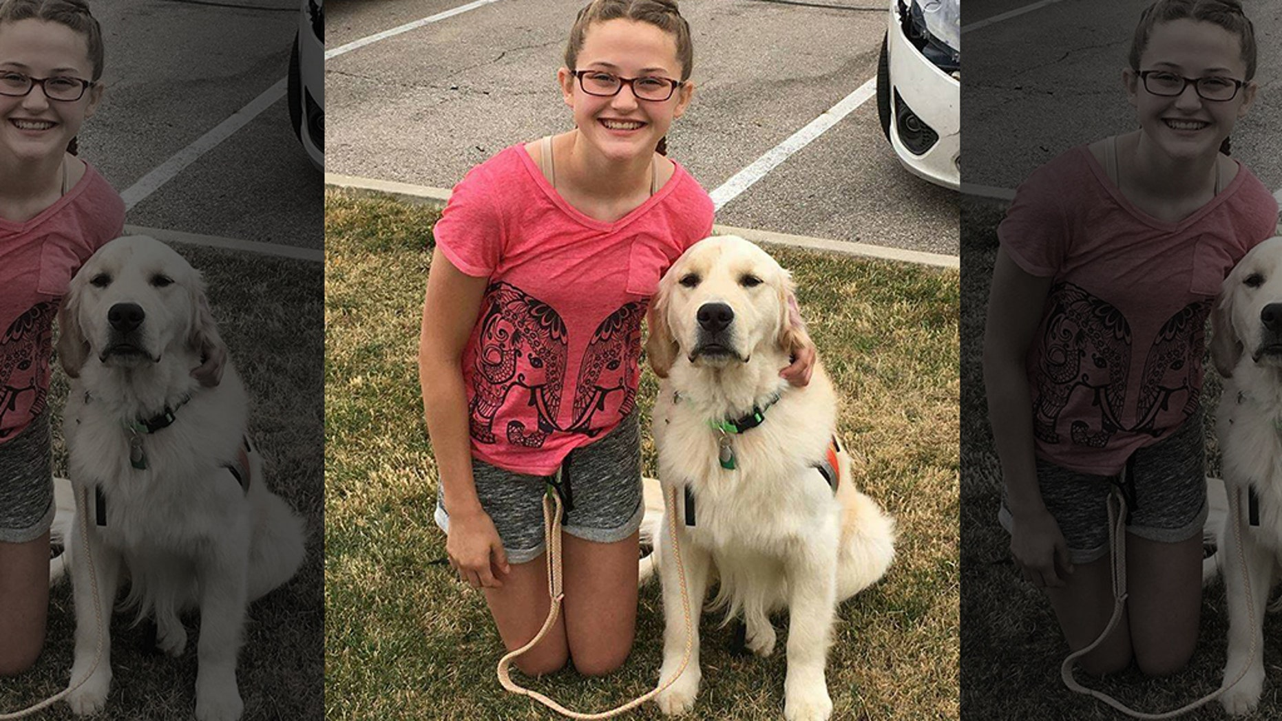 A diabetic alert dog trained to help prevent a 15-year-old girl from going into diabetic shock was apparently shot and killed in the family yard Sunday.