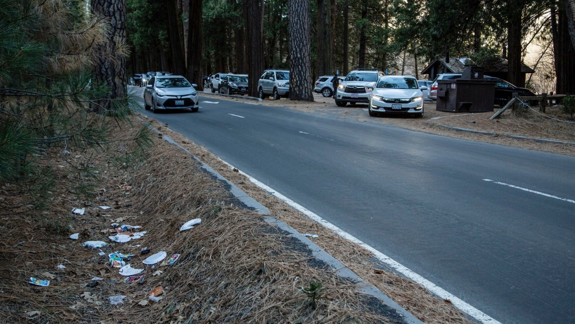 National parks brimming with trash, human feces as government shutdown continues