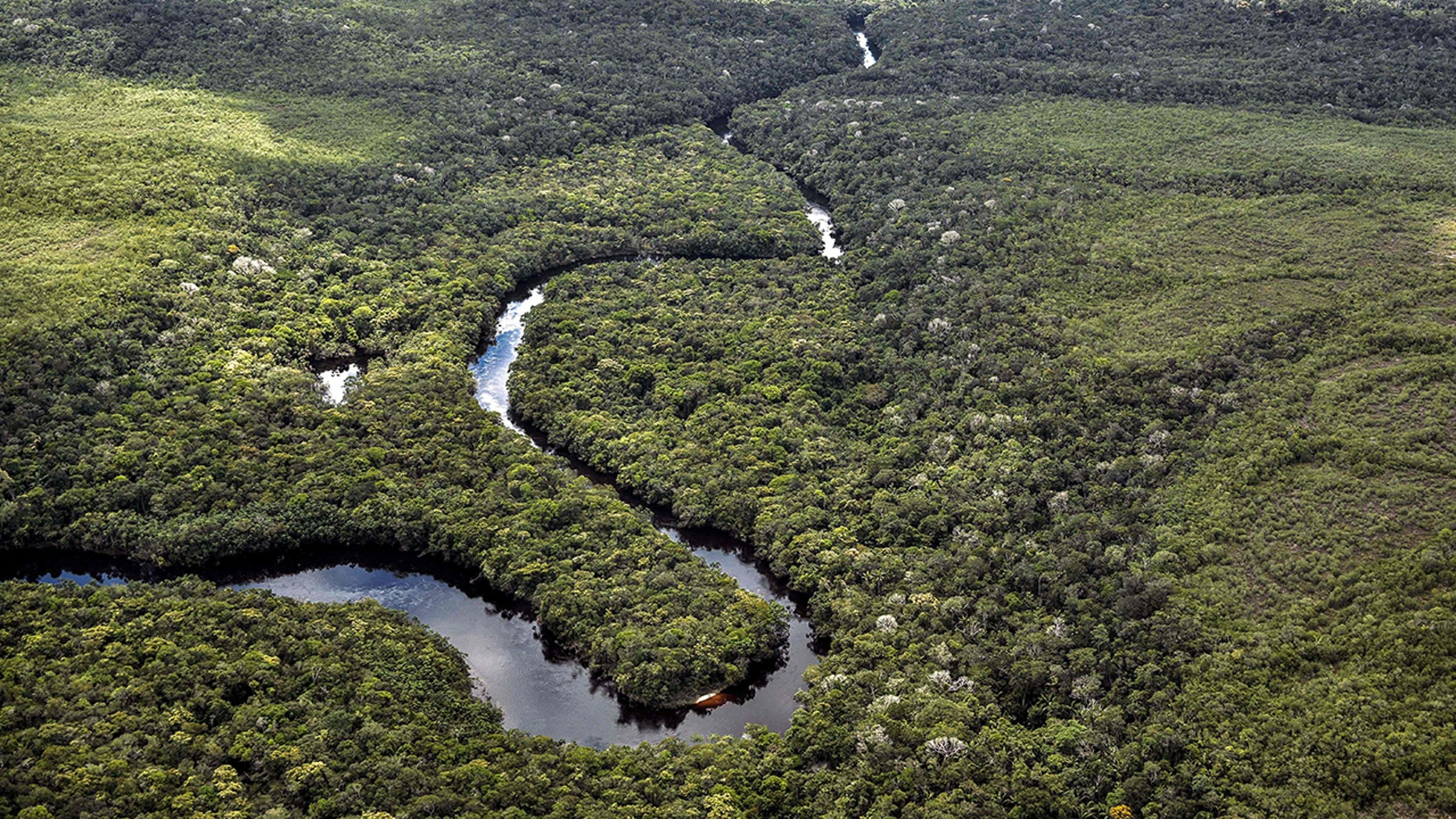 An aerial view of the Amazon rainforest.