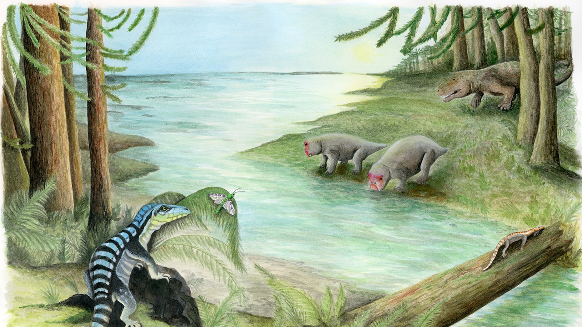 <i>Antarctanax shackletoni</i> stalks an insect on the bank of a river in Antarctica, during the Early Triassic.