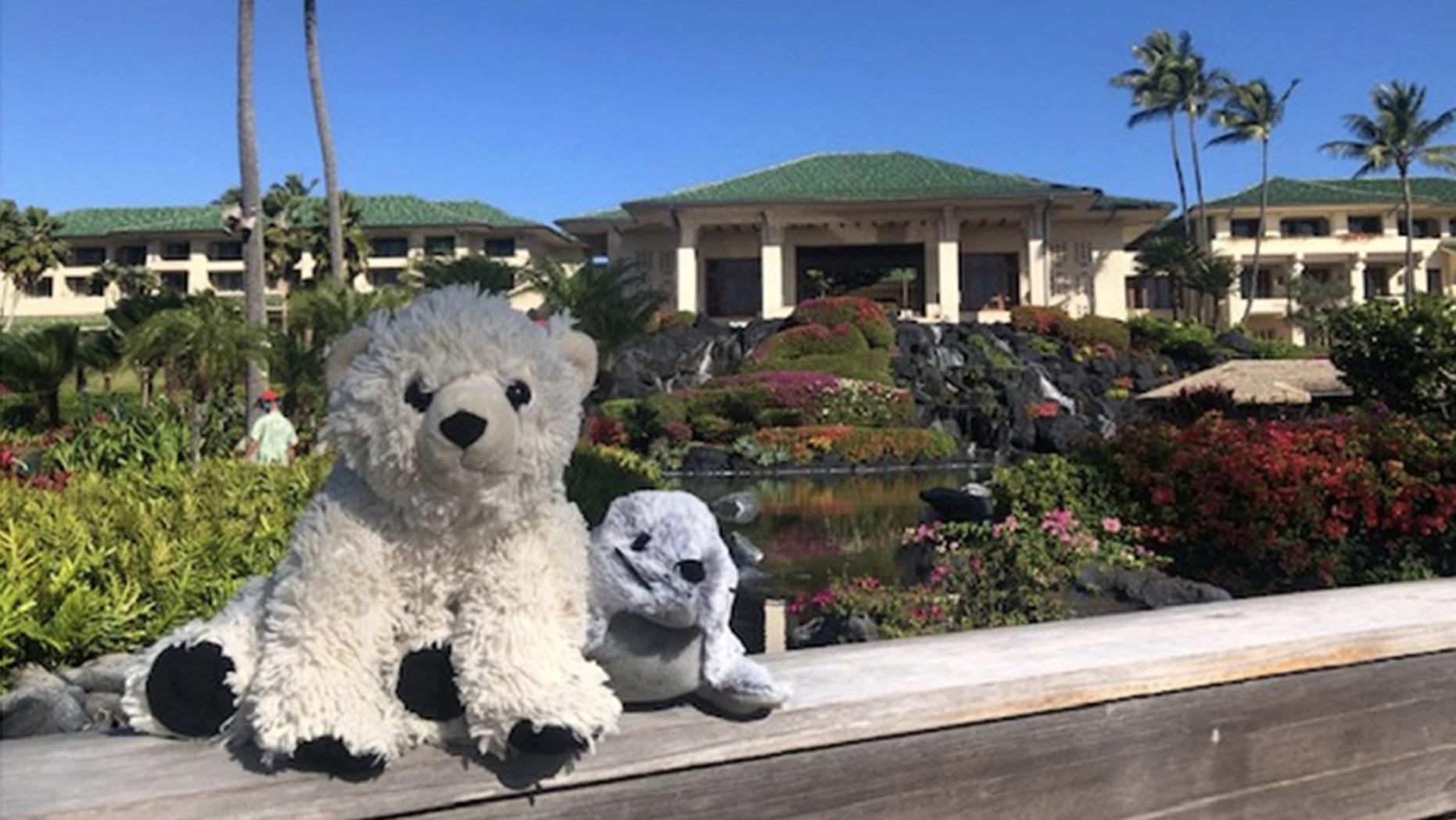 Hotel staff at the Grand Hyatt Kauai took a little boy's bear on an adventure after he left it behind.