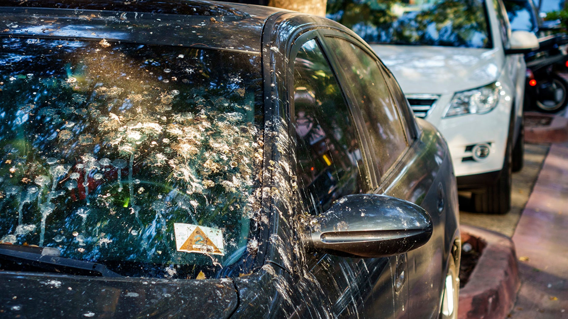 The next time this happens to your car, best to clean it off quickly.