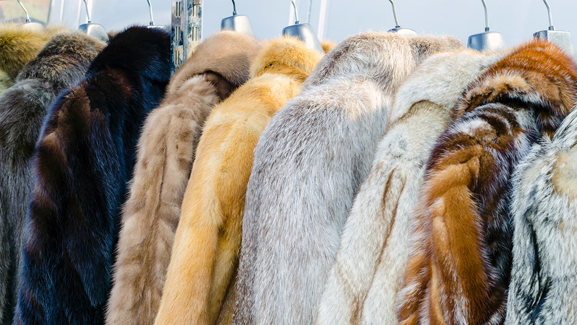 Two opposite retailers have been slammed by a Humane Society for flitting genuine fur as mistake on several items.