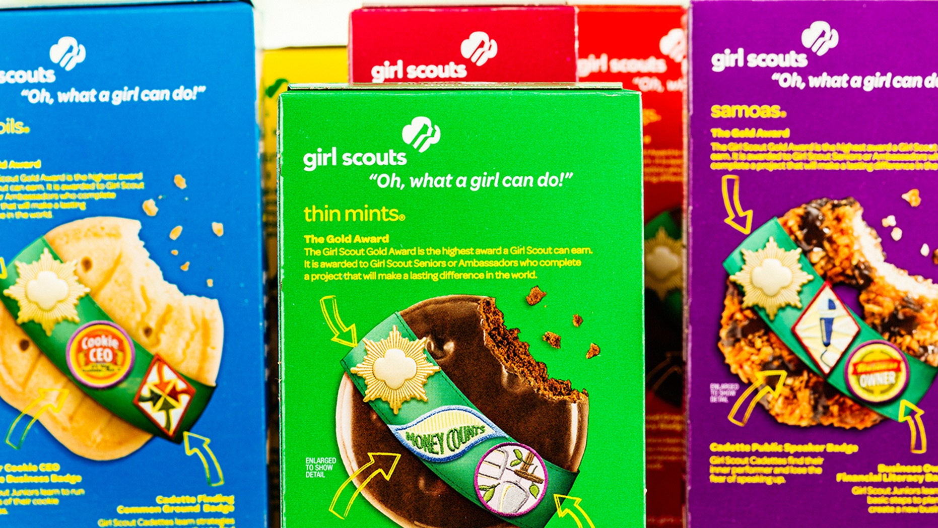A Girl Scout troop selling cookies was robbed of over $1,100.