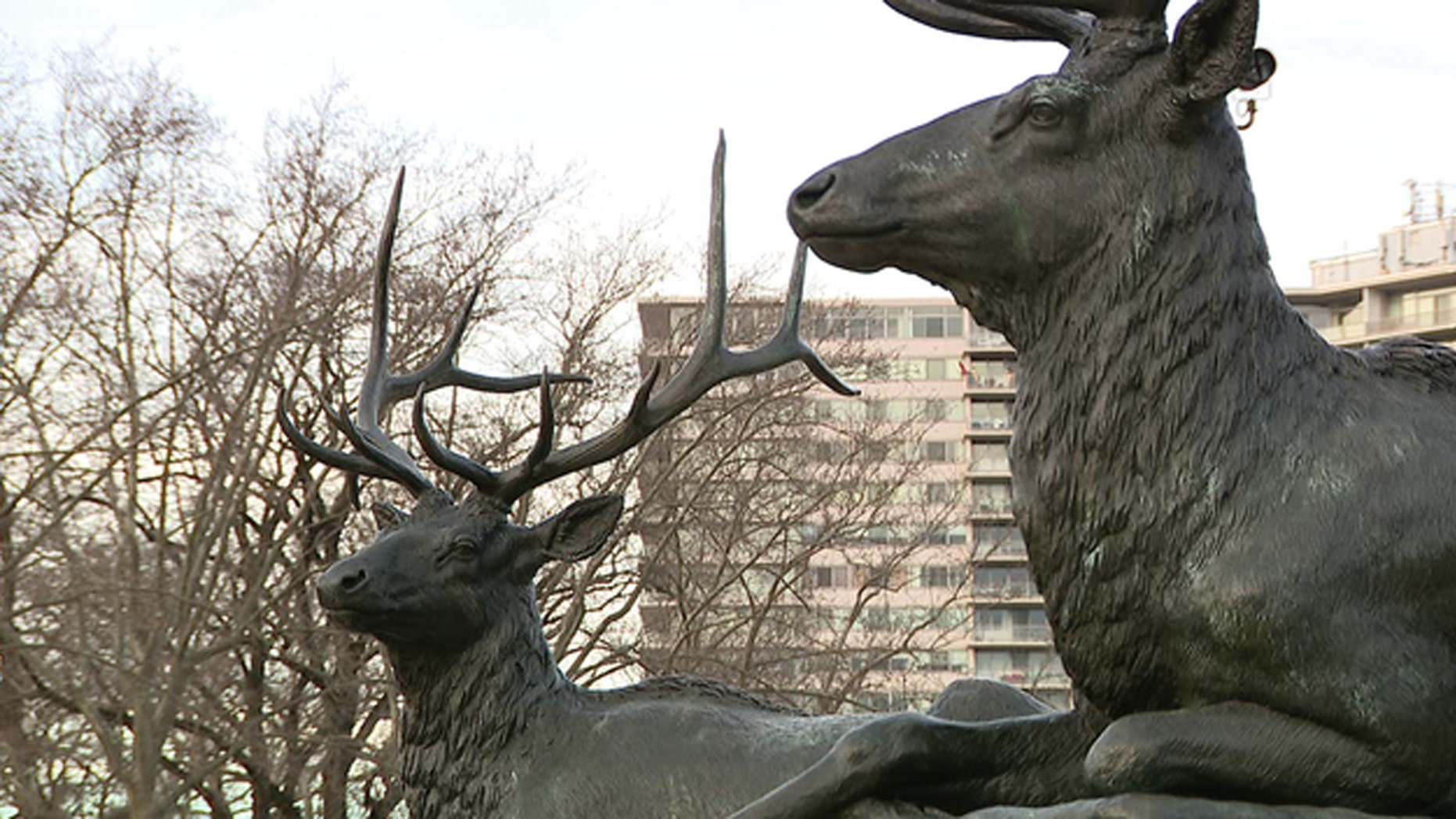 A man ended up impaled on a statue of a deer in Philadelphia on New Year's Day, according to officials.