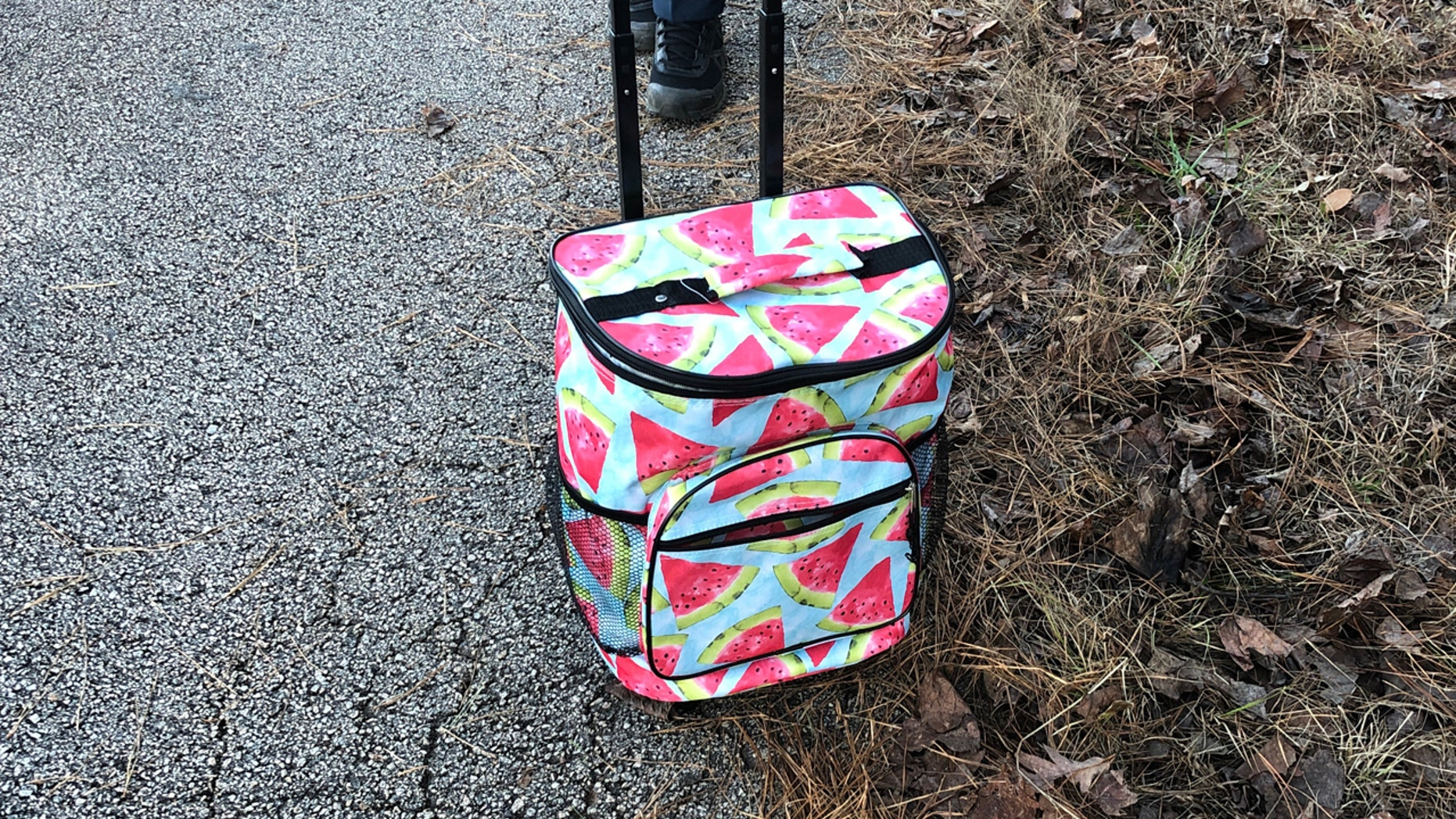A cooler with the body of a baby was discovered in Troup County, Georgia on Sunday.