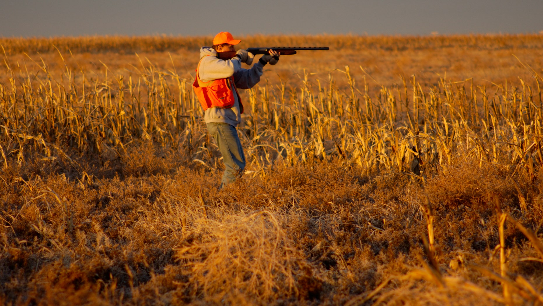 Illinois Gov. Bruce Rauner suggested that pink, as opposed to orange, would stand out even better during the fall hunting season.