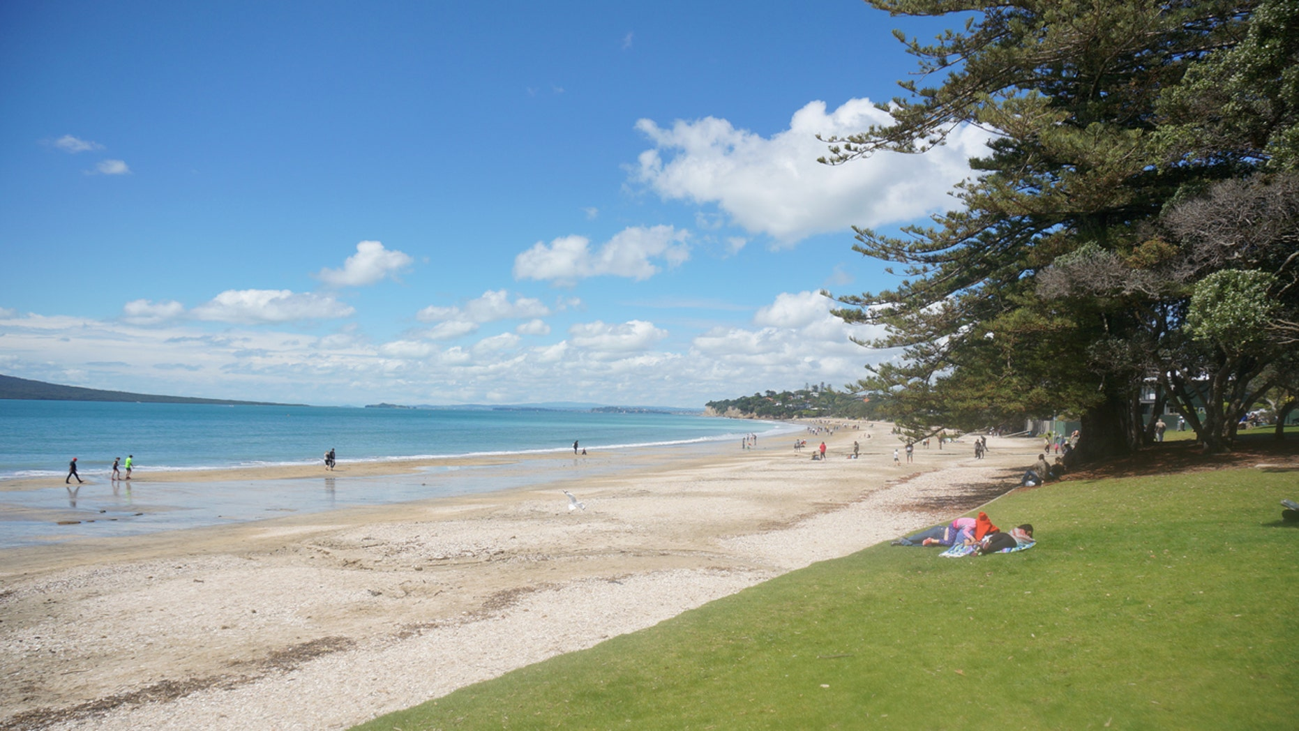 The family of tourists allegedly littered at an Takapuna Beach in Aukland, New Zealand, as well as threatened locals and left a hotel room strewn with garbage and food.