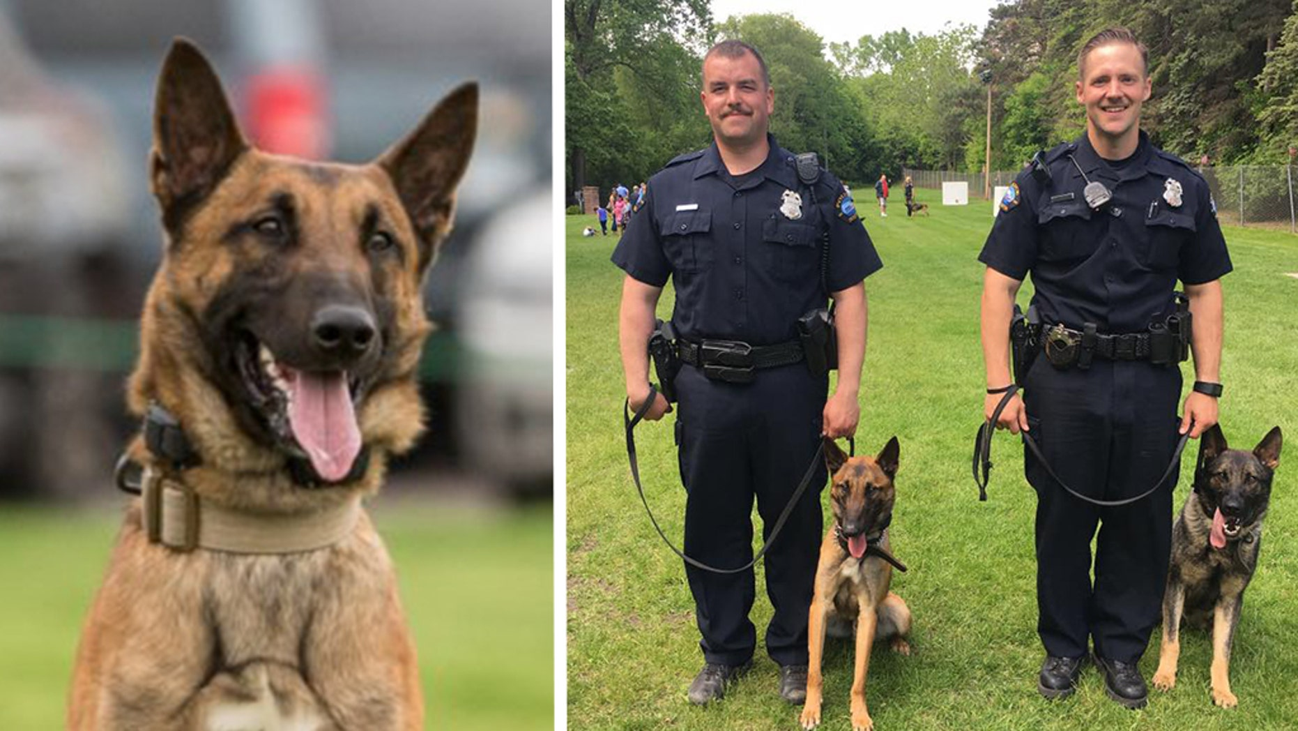 K-9 Haas left, was killed on Sunday during a shoot-out with a suspect in Duluth, Minnesota, police said.