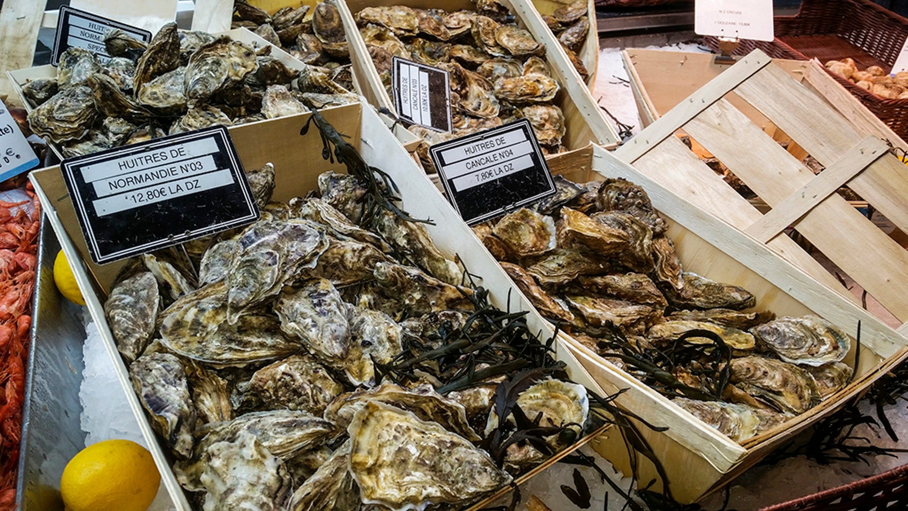 At least 41 business have been affected by the Hod Island Oyster Company recall.