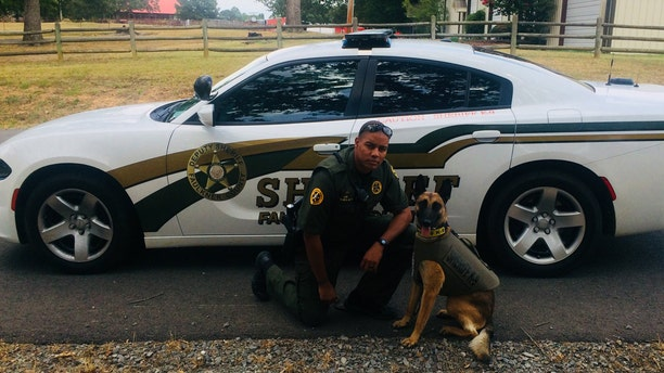 Faulkner County Deputy Keenan Wallace, a K9 handler, was fired Saturday after shooting a Chihuahua during a service call. The incident was captured on video.