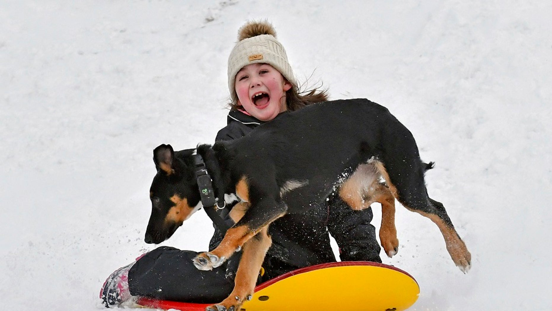 Kylie Silvia, 7, of Sedro-Woolley, Wash., slides down a hill Feb. 9, 2019, at the Northern State Recreation Area while being chased by Atlas, one of the two family dogs. (Associated Press)