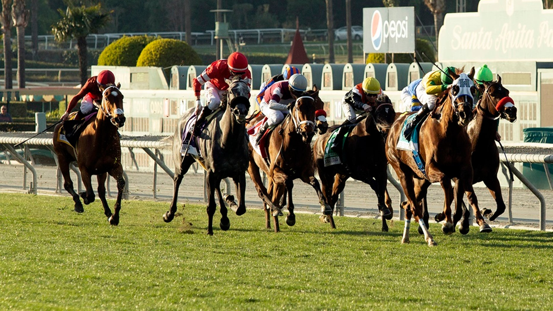 In this image provided by Benoit Photo, Vasilika, second from right, with Flavien Prat aboard, draws away in mid-stretch and goes on to win the Grade II, $200,000 Buena Vista Stakes horse race Saturday, Feb. 23, 2019, at Santa Anita Park in Arcadia, Calif. (Benoit Photo via AP)