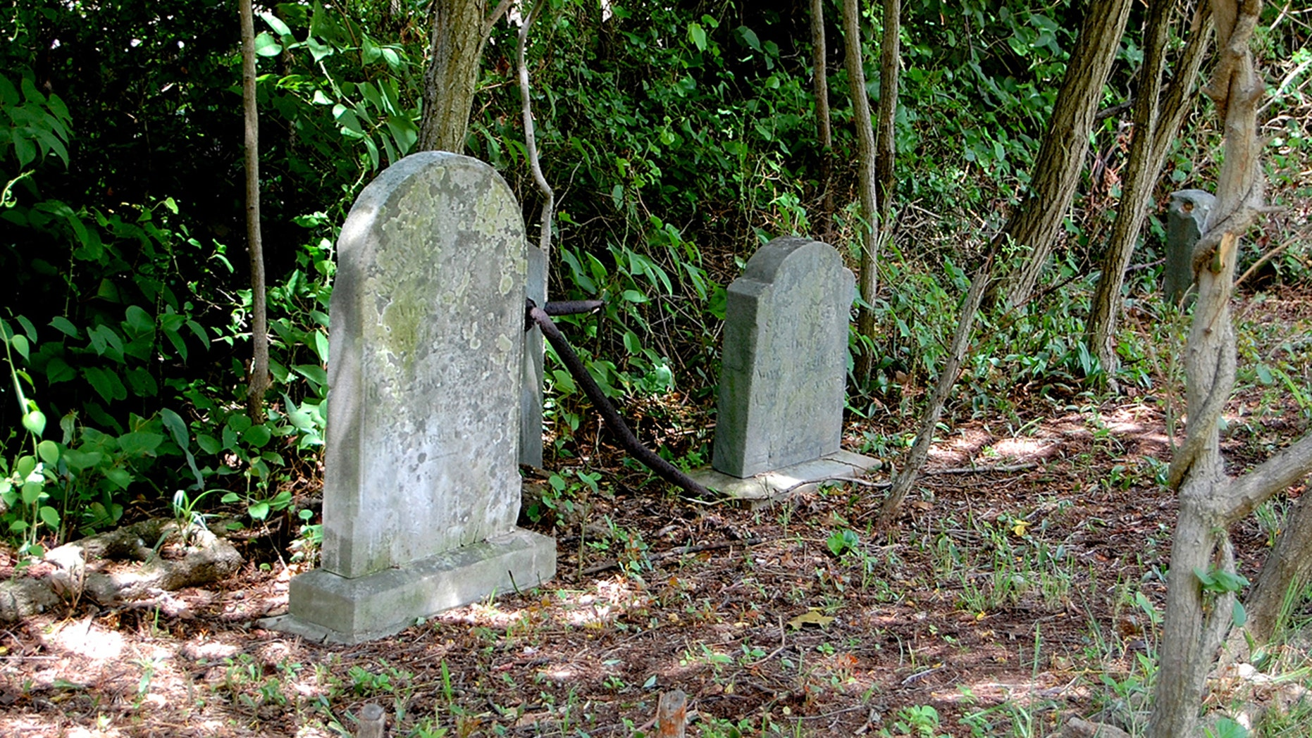 A new bill has been introduced in Congress that would preserve and document in a nationwide database the discovery of lost African-American burial sites