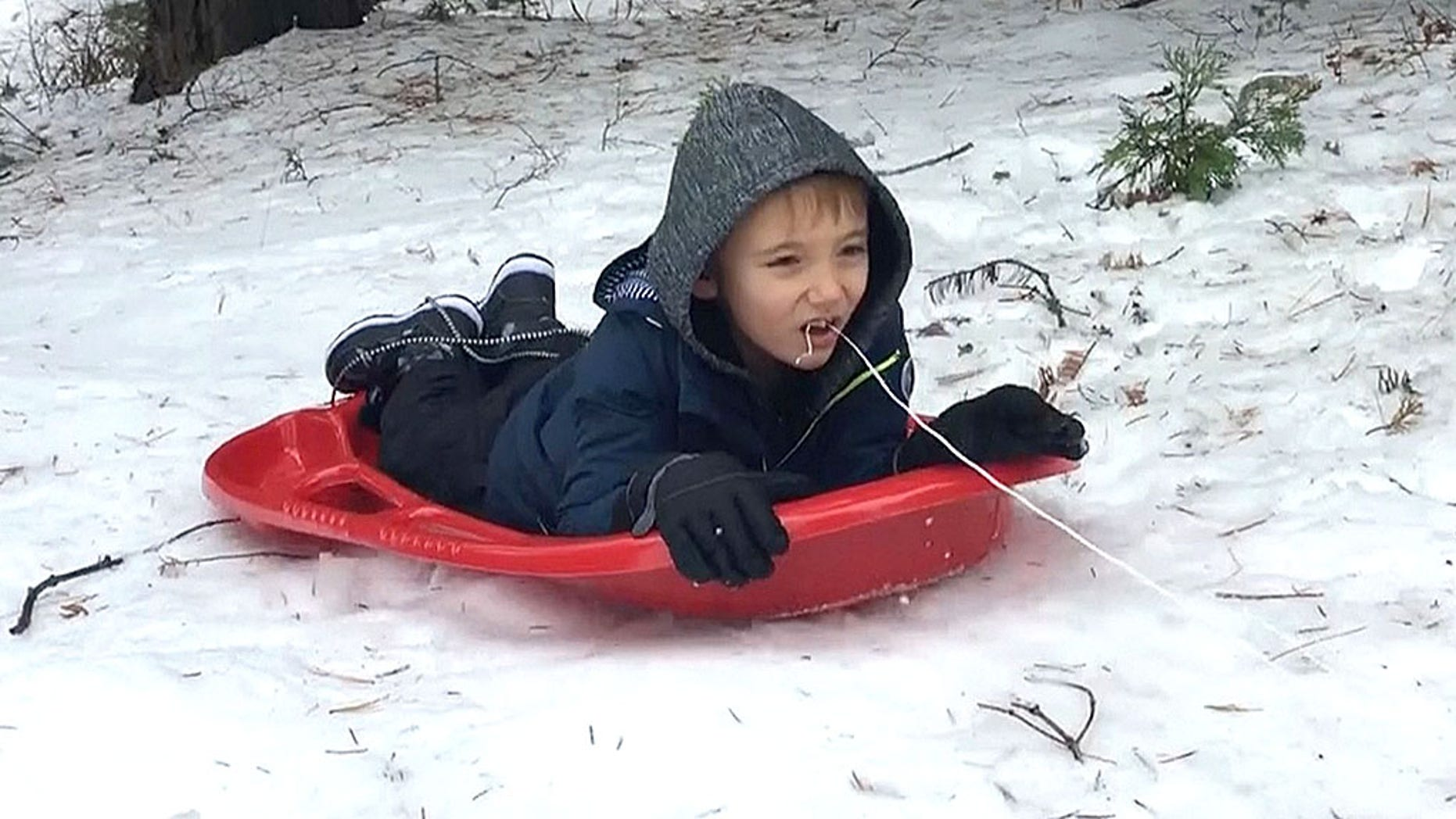 P Atticus Chandler, 6, decided the best way to yank out his loose tooth was to tie a piece of string around his tooth and let a sled do the trick.
