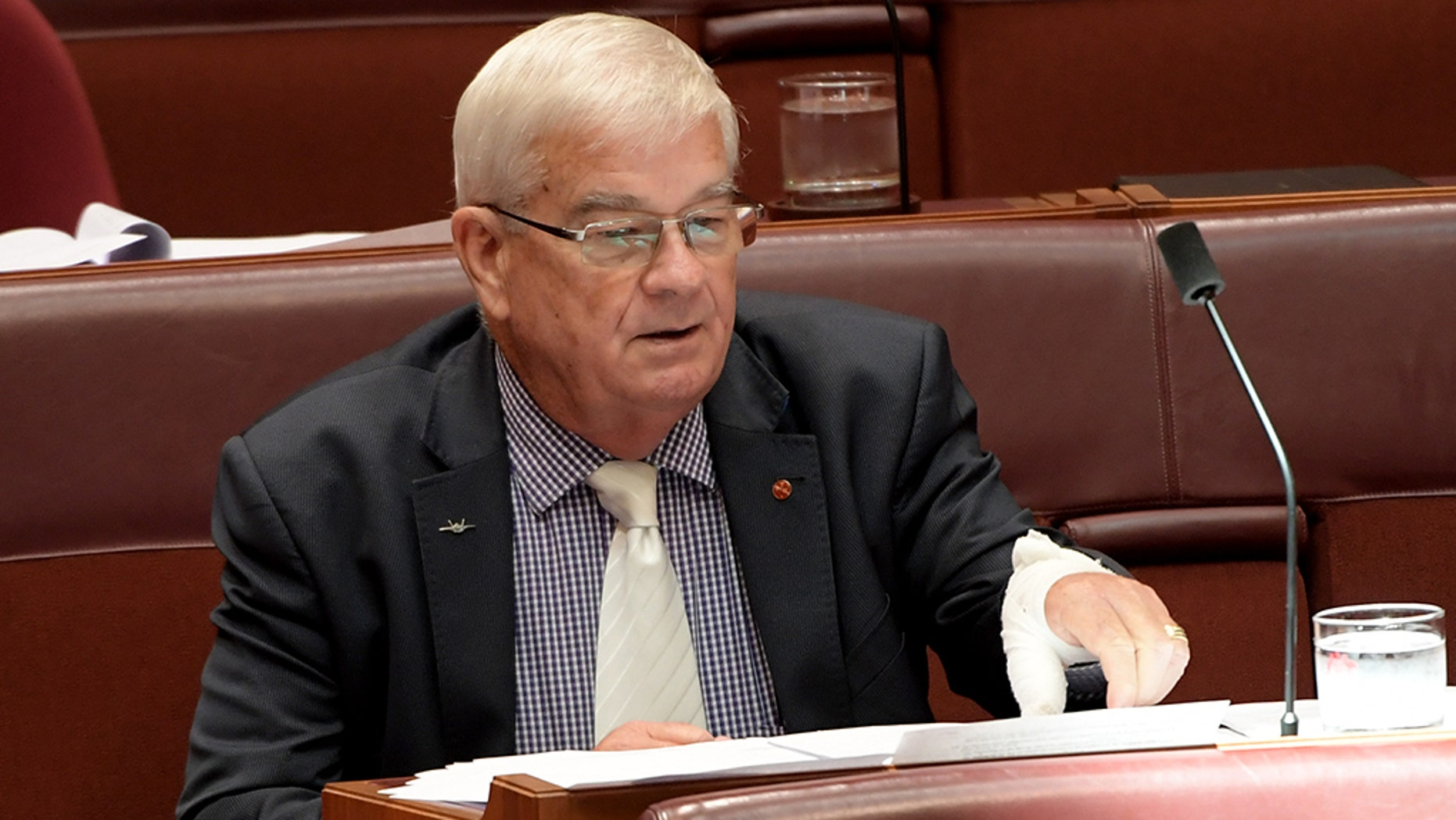 Senator Brian Burston, pictured with a bandage on his hand, admitted that he had smeared his blood on the door of One Nation leader Pauline Hanson's door after a scuffle with her aide in the parliament halls.