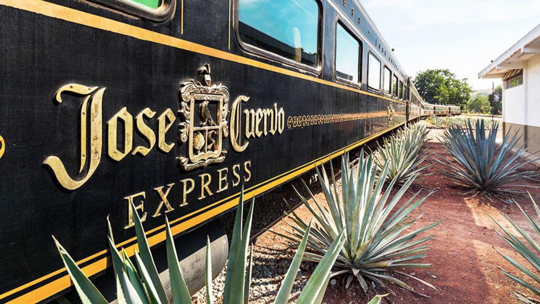 Tequila fans now have the chance to travel from Guadalajara to Tequila, Mexico on a vintage train while sipping an unlimited flow of the agave spirit.