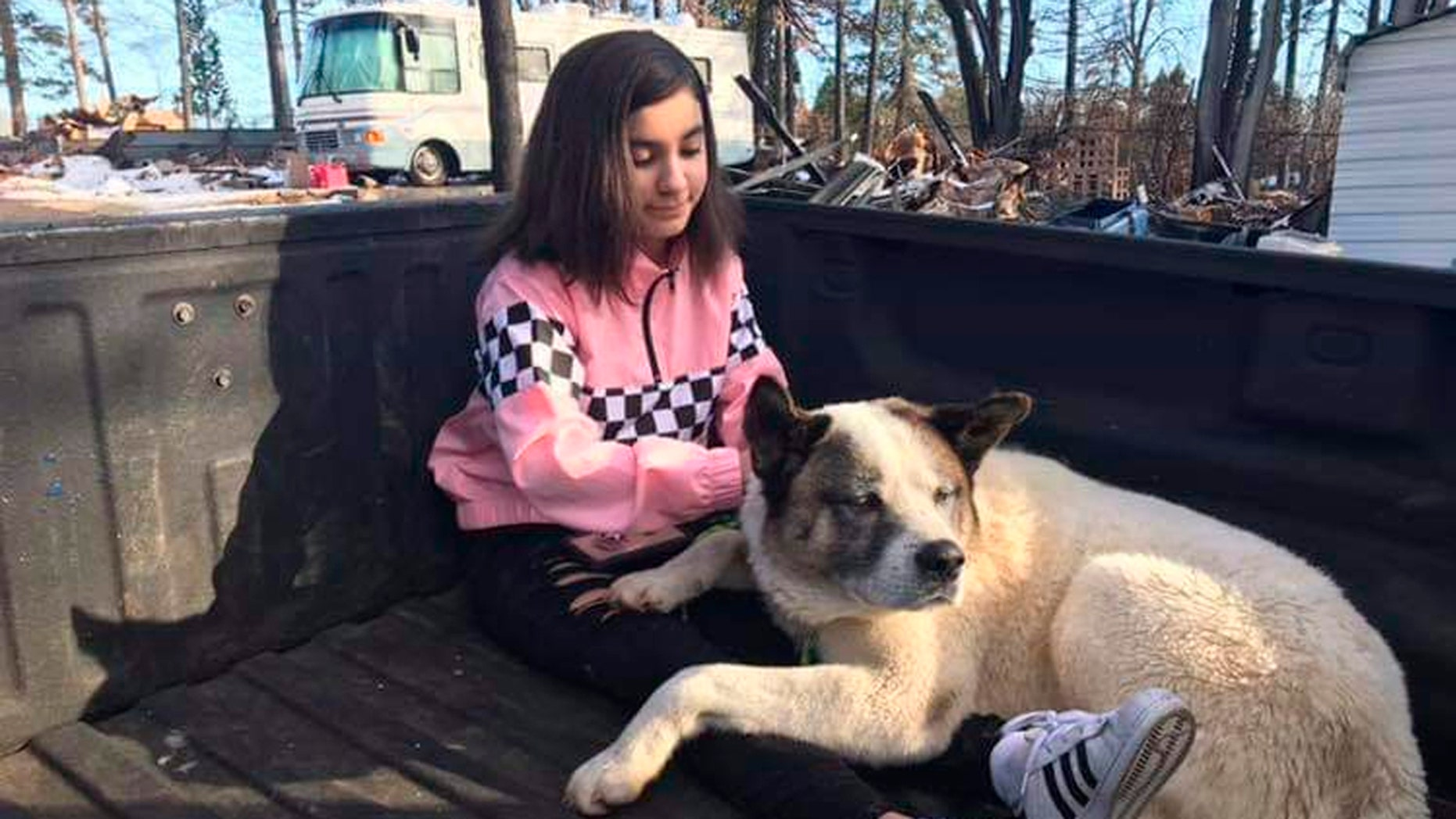 This Feb. 18, 2019 photo provided by Ben Lepe shows Maleah Ballejos reunited with her dog Kingston in Paradise, Calif. The Akita named Kingston was reunited with his family 101 days after he jumped out of their truck as they fled a devastating Northern California wildfire.