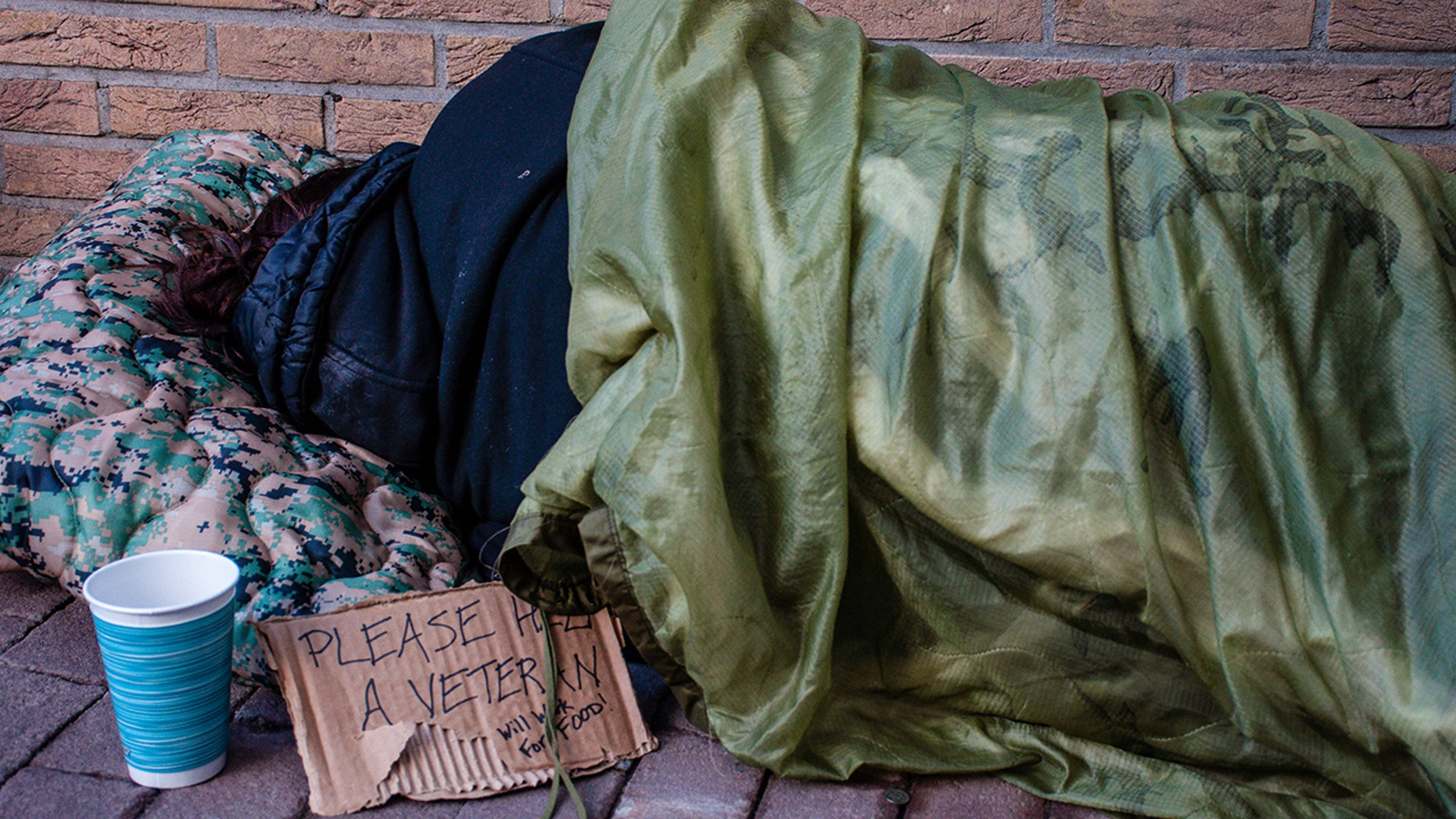 Minnesota is closer to its goal to eliminate homeless people