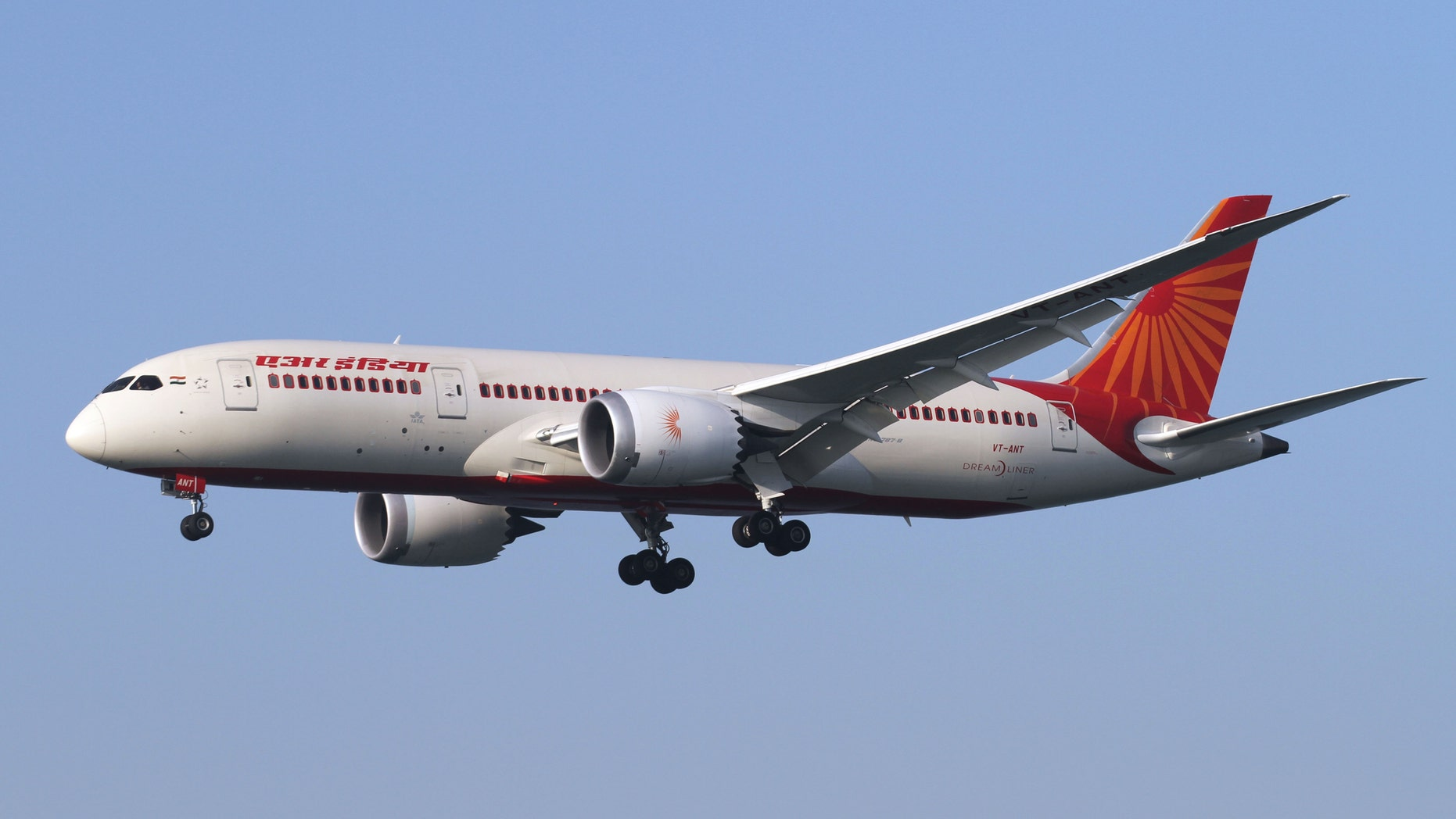 """Air India confirmed the company reached out to both the caterer and the """"aggrieved passenger."""""""