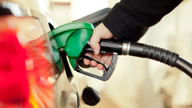 """The smell of gasoline is toxic, especially when breathed in large amounts.<br data-cke-eol=""""1"""">"""