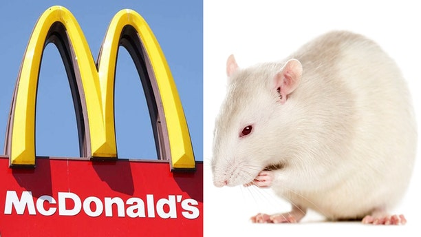 Police are still searching for the man who released a fat rat inside a New Jersey McDonald's during peak dining hours.