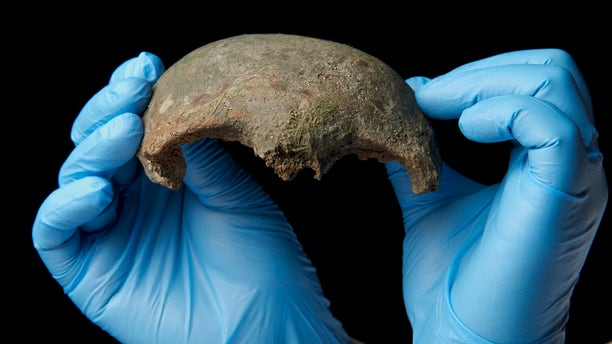Someone fished this human skull fragment from the filthy River Thames in London. It is roughly 5,600 years old.