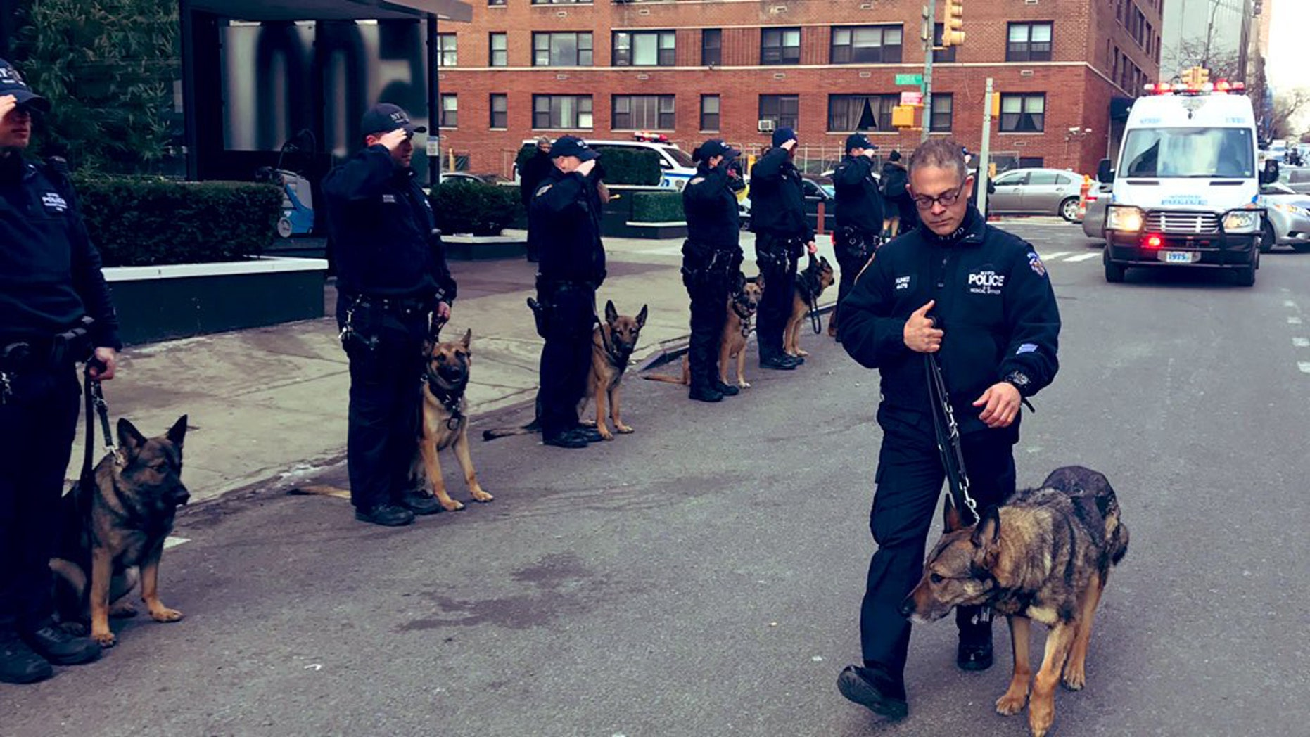 The New York Police Department honored one of its own, Transit Canine Axle, with one final salute. (NYPD)