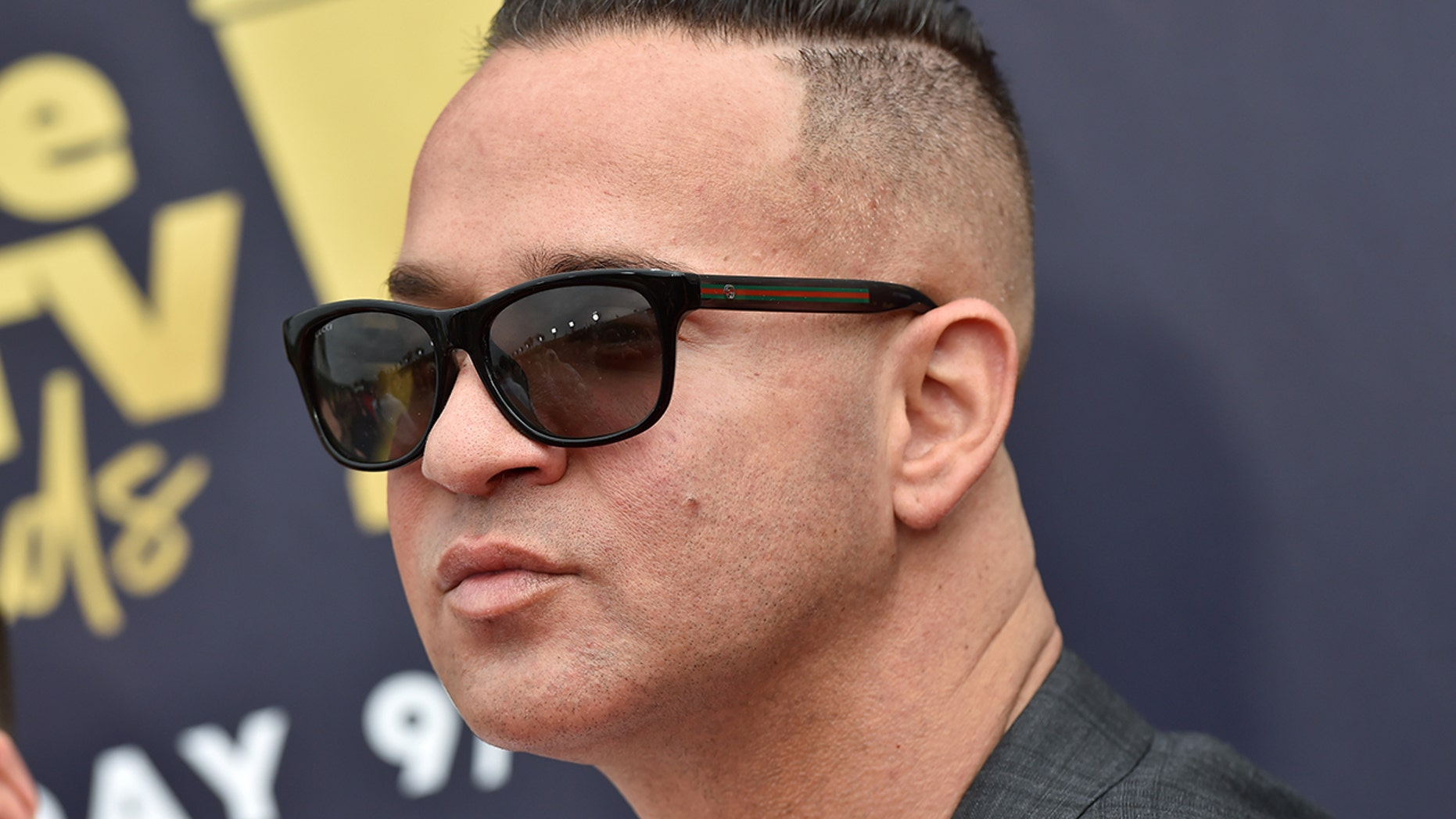 TV personality Mike Sorrentino attends the 2018 MTV Movie And TV Awards at Barker Hangar on June 16, 2018 in Santa Monica, California.