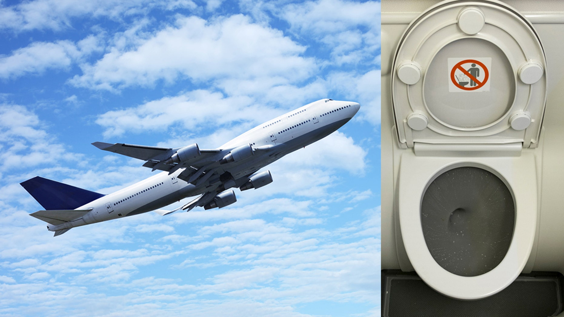 One airplane passenger has won overnight internet fame after sharing a self-produced video to Twitter of herself licking the toilet seat of a plane bathroom.