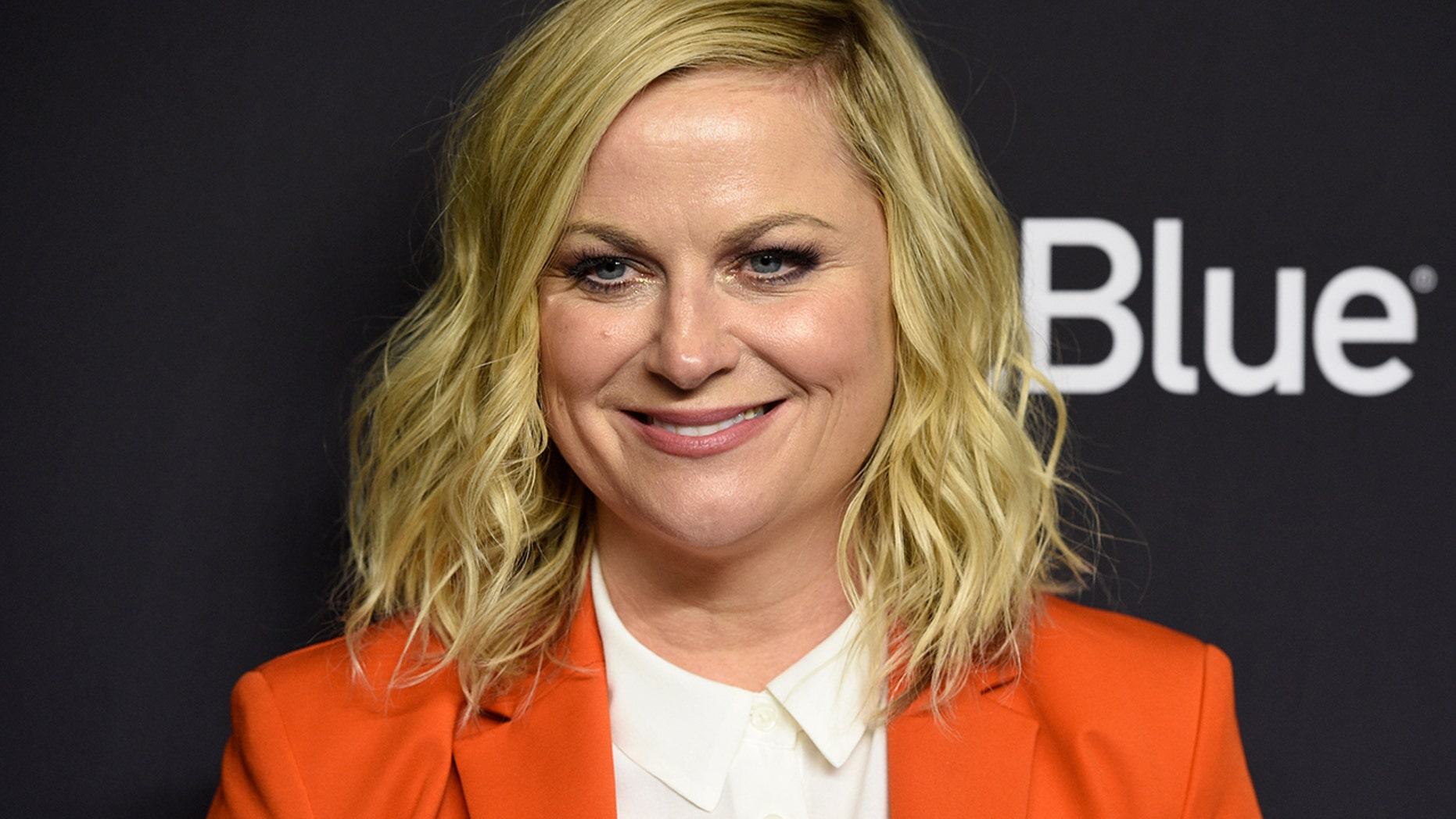 Amy Poehler reflects on 10-year anniversary of 'Parks and