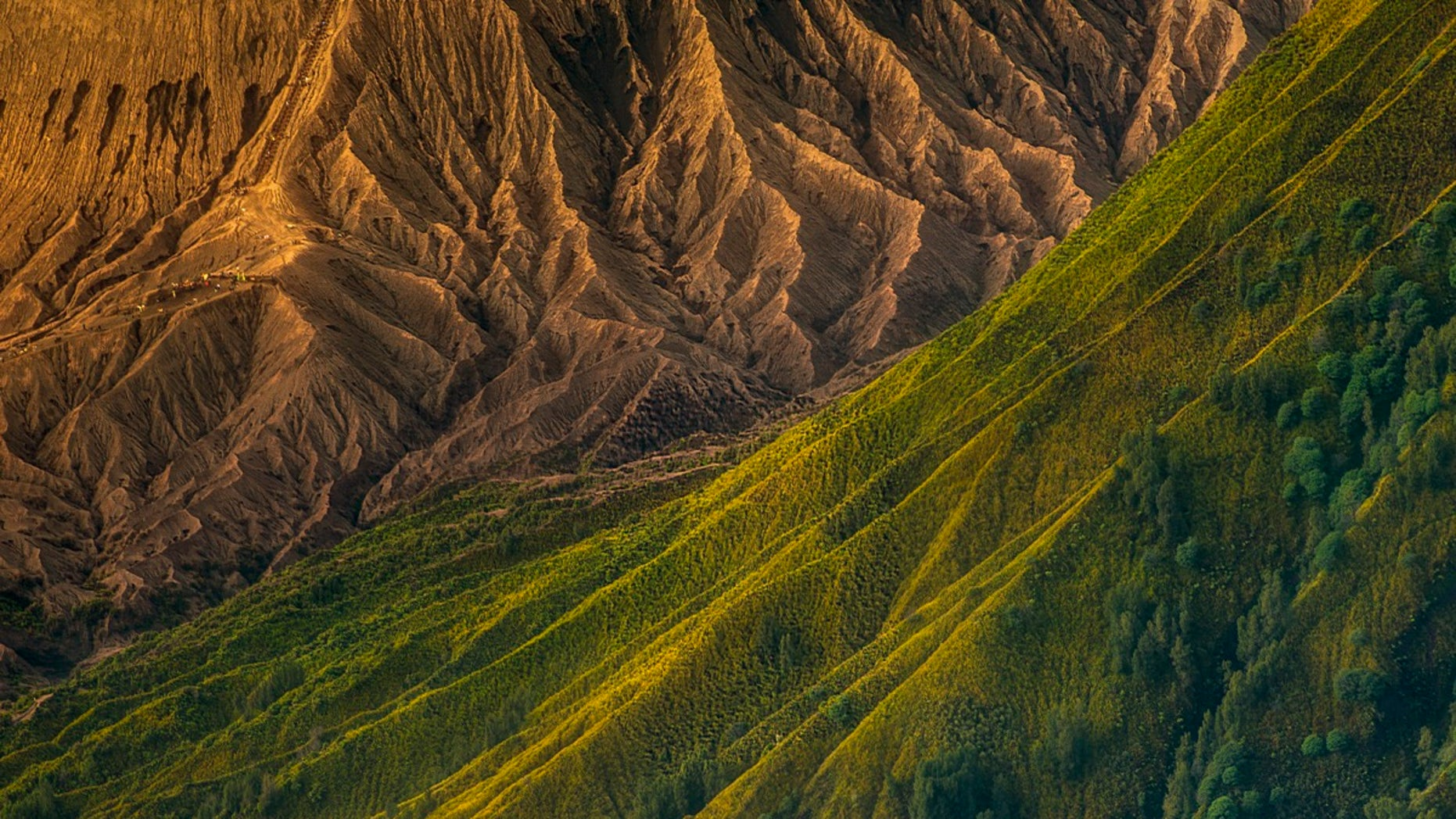 Here, the ridges of Batok and Bromo volcanoes in Indonesia.