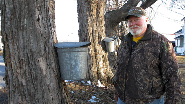In this Wednesday, March 27, 2019 photo, maple syrup maker Fred Hopkins stands next to sap-collecting buckets in St. Albans, Vt., lent to him after 140 of his buckets were stolen off trees. (AP Photo/Lisa Rathke)