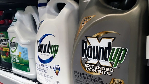 FILE - In this Sunday, Feb. 24, 2019 file photo, containers of Roundup are displayed on a store shelf in San Francisco. (AP Photo/Haven Daley, File)