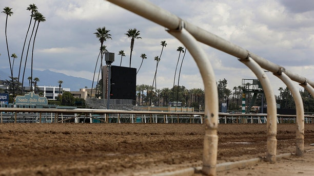 FILE - This March 7, 2019, file photo, shows the empty home stretch at Santa Anita Park in Arcadia, Calif. (AP Photo/Damian Dovarganes, File)