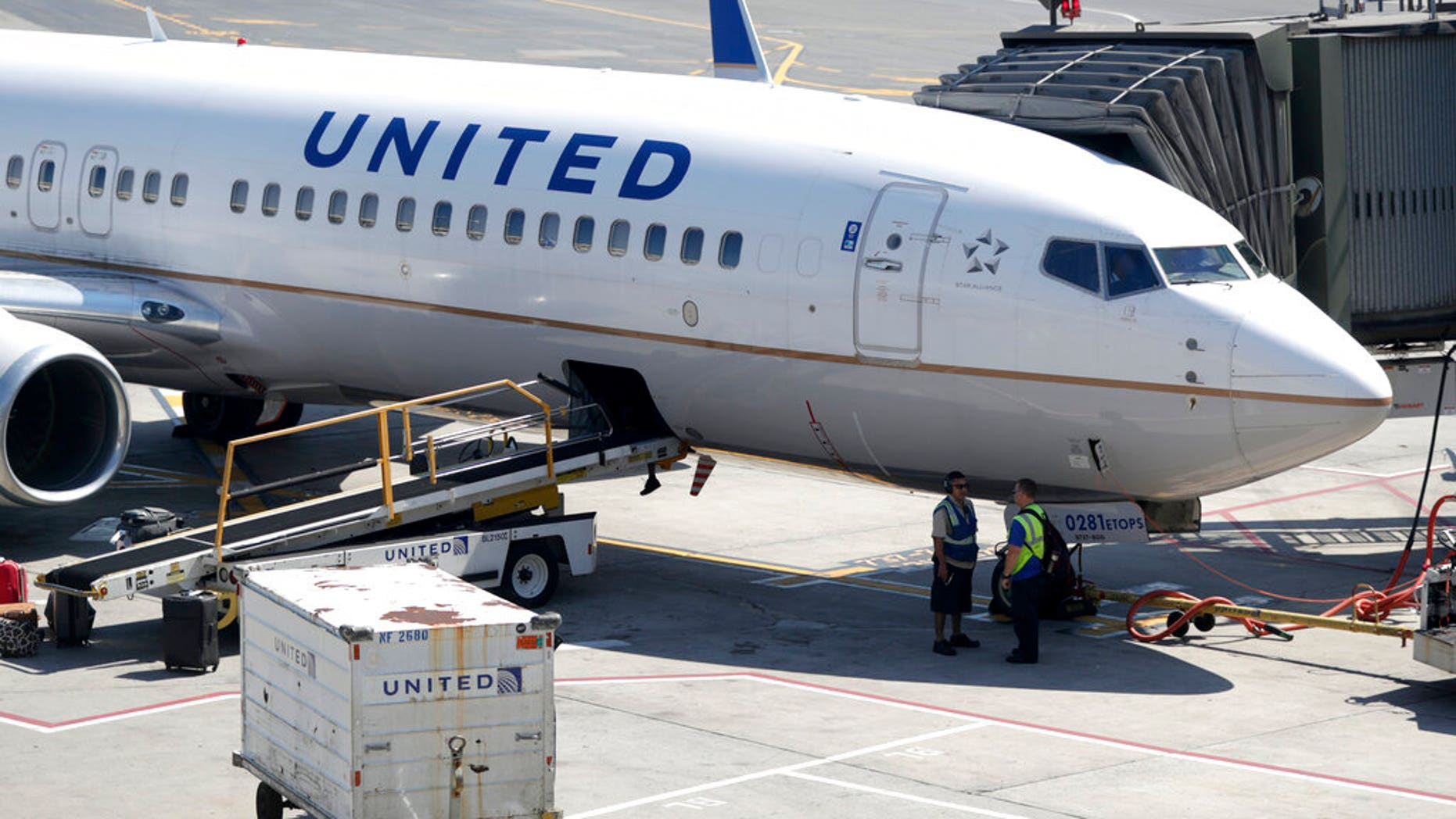 FILE: A United Airlines commercial jet sits at a gate at Terminal C of Newark Liberty International Airport in Newark, N.J.