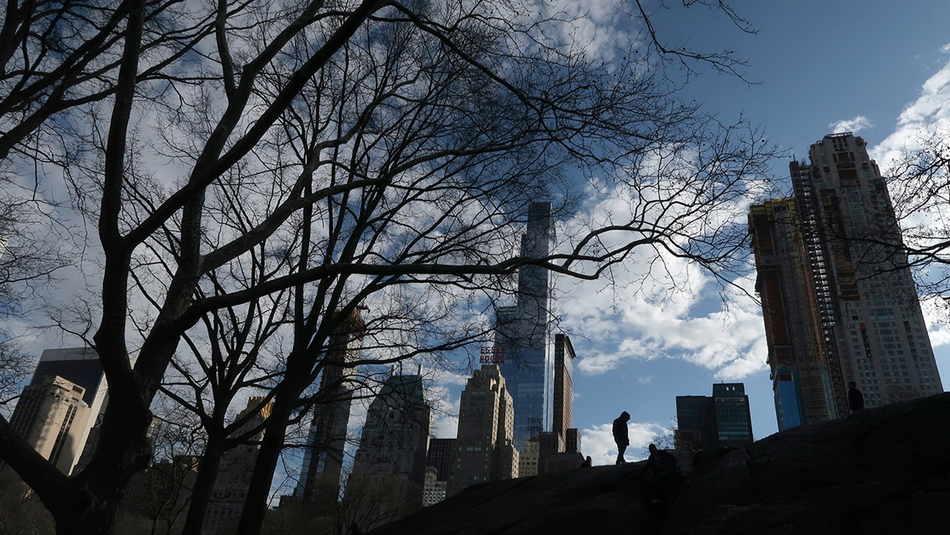 Central Park in front of residential towers underneath construction along 59th Street on Apr 4, 2018 in New York City. (Photo by Gary Hershorn/Getty Images)