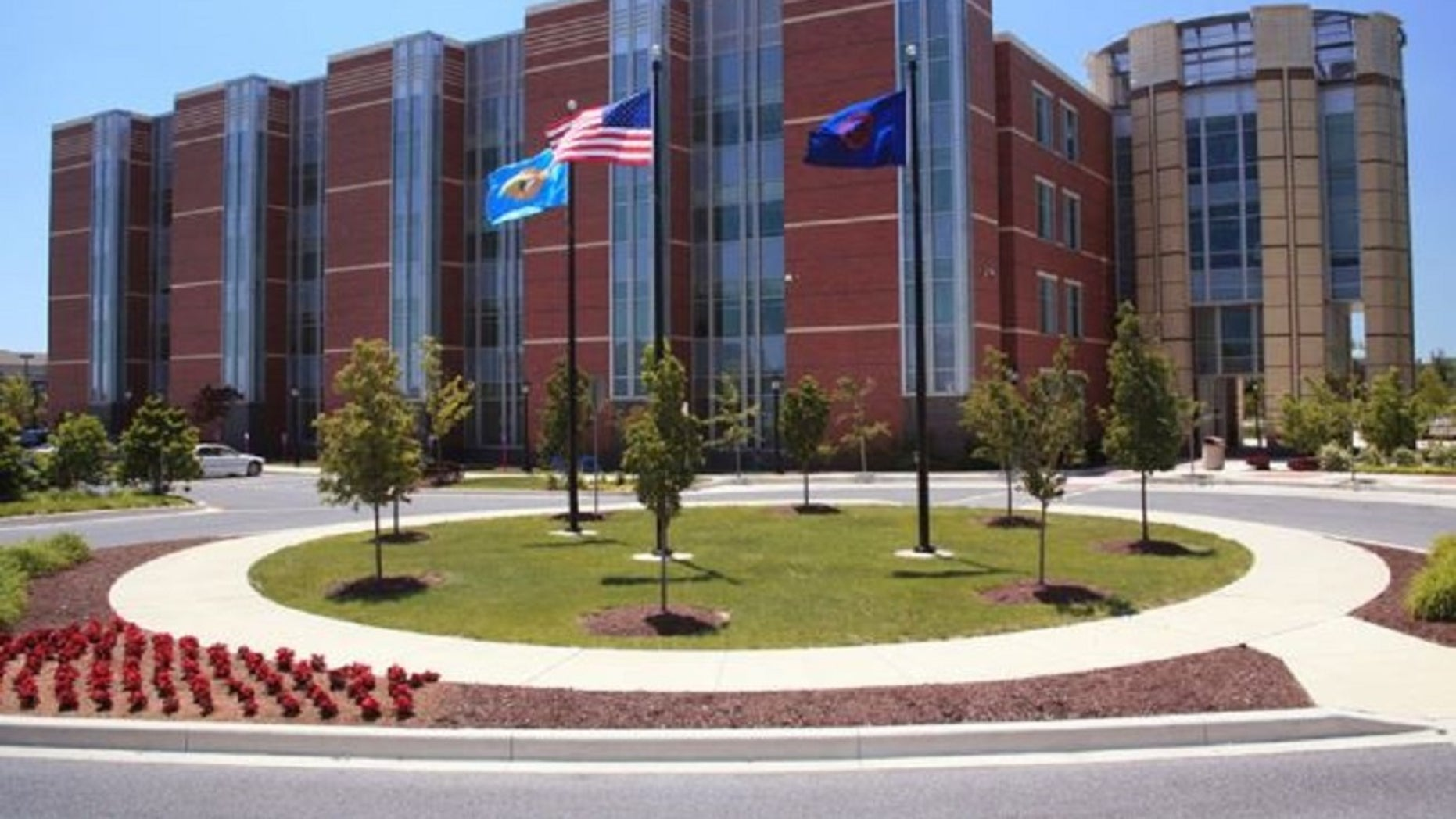 A former Delaware State University officials pleaded guilty to taking bribes in exchange for classifying students as in-state residents.