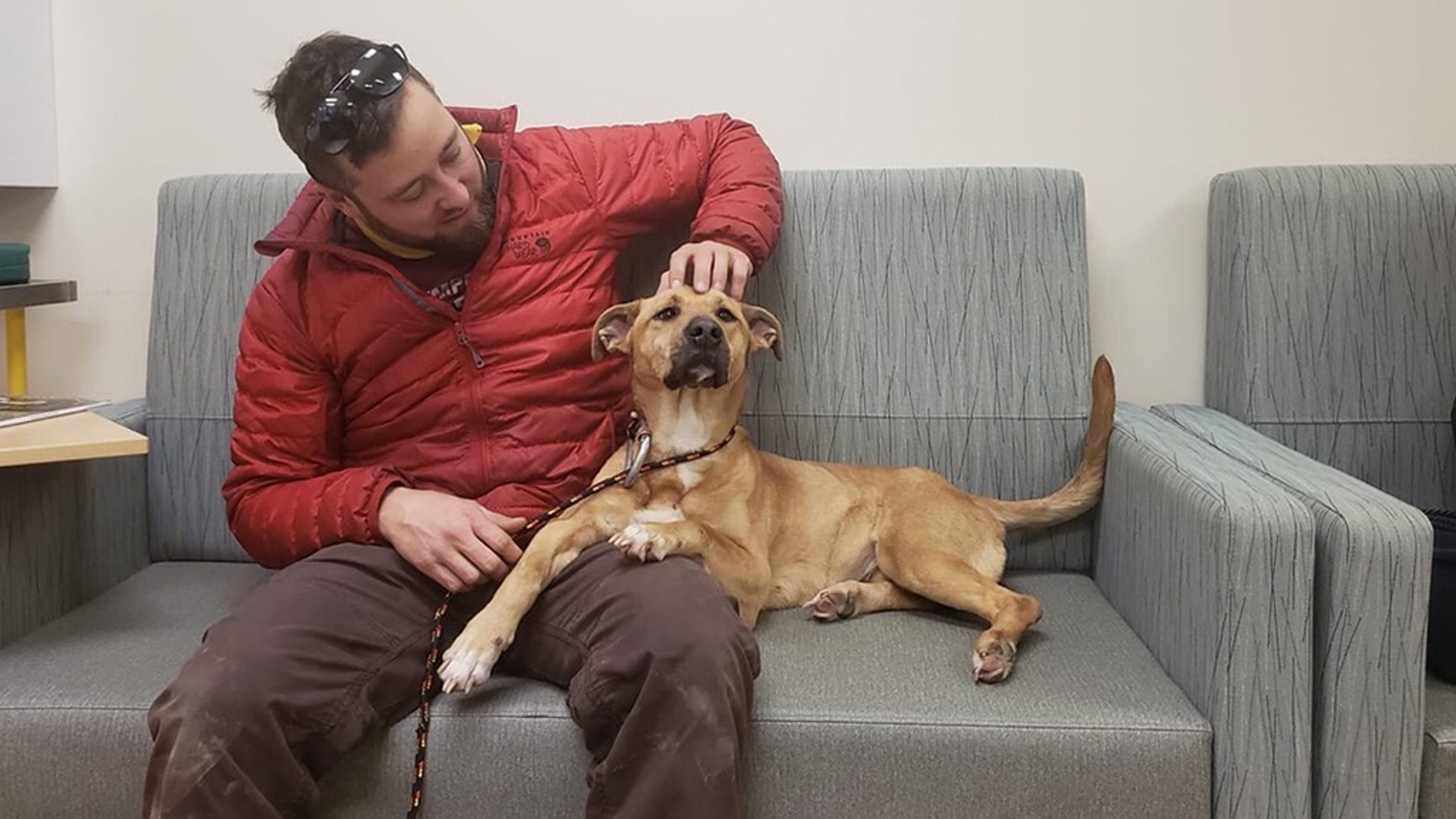 Matthew Glatz plans to help find ideal adoptees for the special pup, with assistance from a non-kennel adoption agency in Maine.