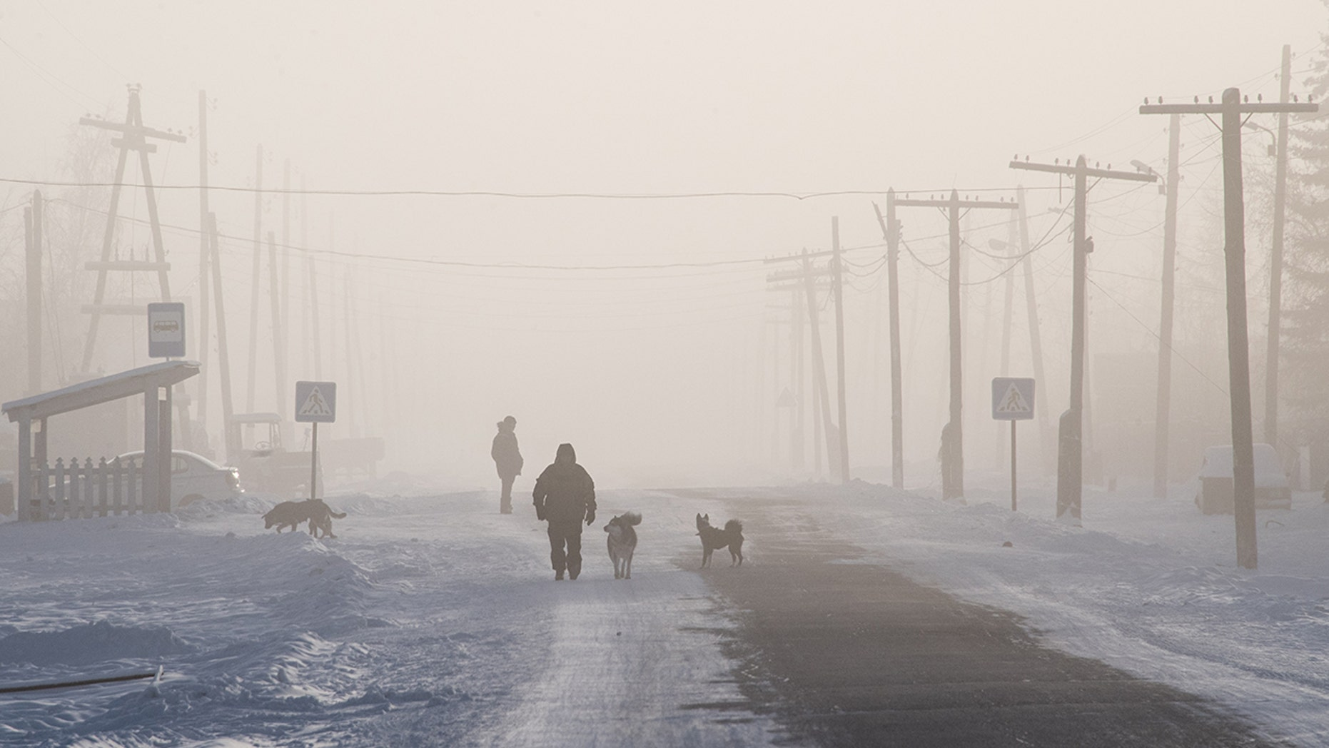 TOPSHOT - A man is surrounded by dogs as he walks on the main street of the settlement of Oy, some 70 km south of Yakutsk, with the air temperature at about minus 41 degrees Celsius, on November 27, 2018. (Photo by Mladen ANTONOV / AFP) (Photo credit should read MLADEN ANTONOV/AFP/Getty Images)